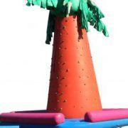 cocotier d'escalade