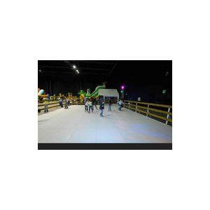 Location de patinoire synthétique